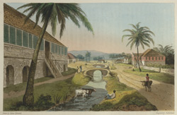 Holland Estate, St Thomas In The East- The Property Of G. W. Taylor Esq, M.P